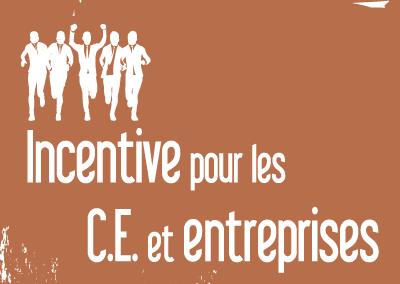 Incentive – Entreprises